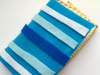 Passover craft