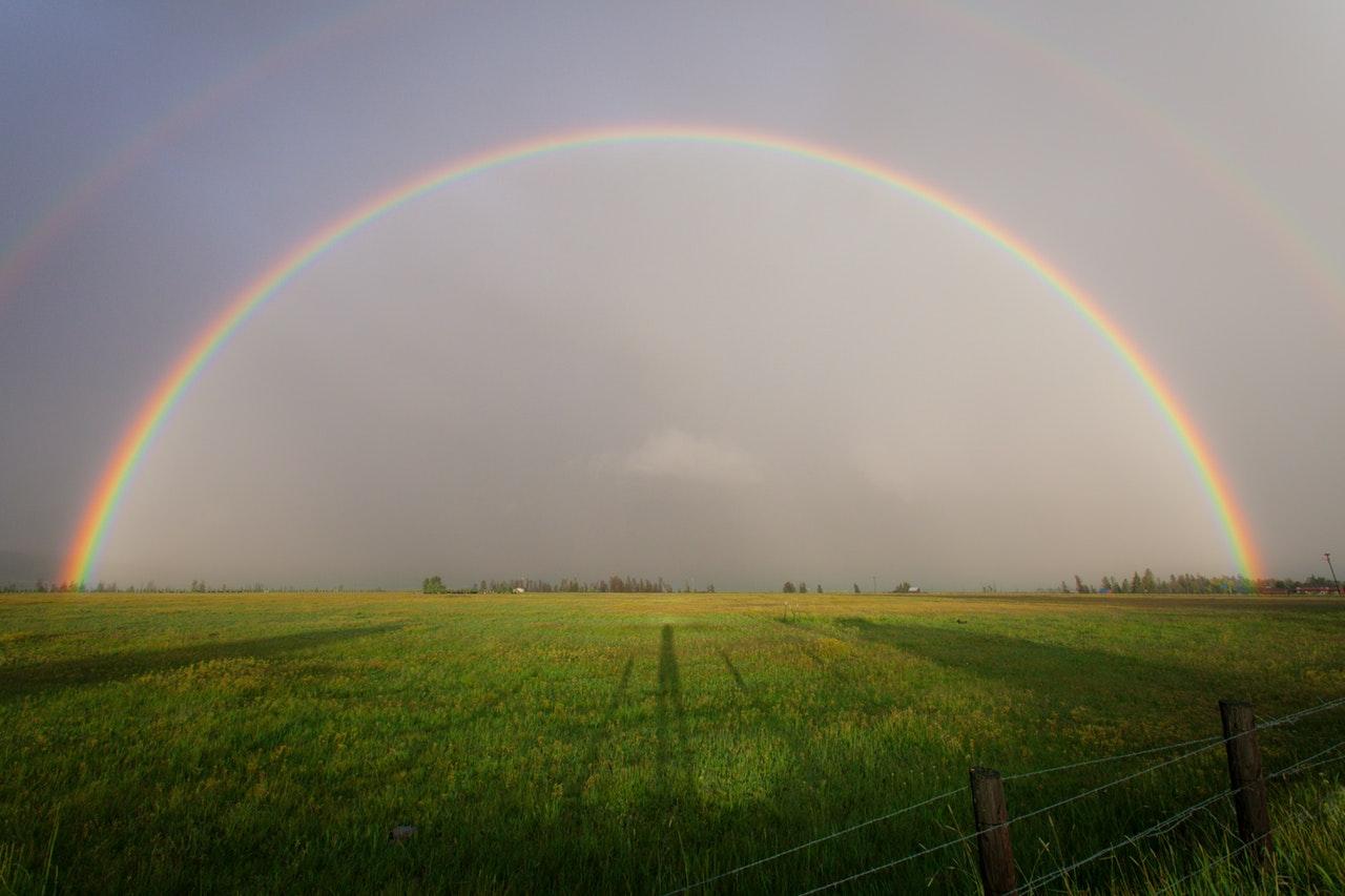 rainbow-activity