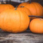 Halloween Sensory Pumpkin Tissue Paper Art