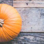 No-Carve Pumpkin Family Art Activity
